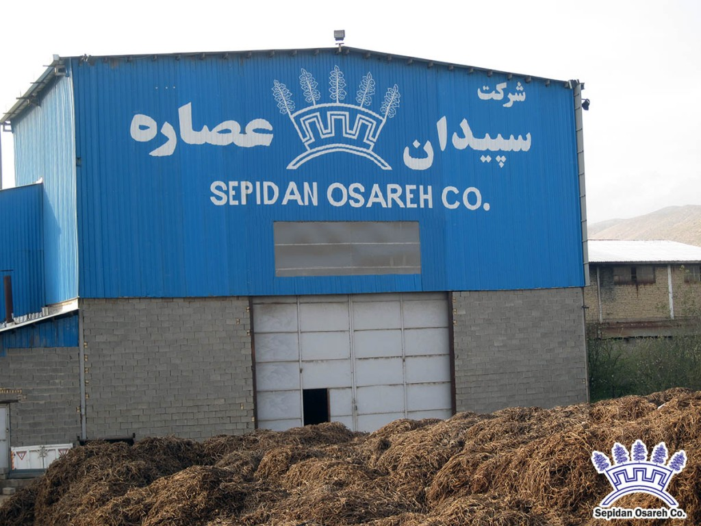 Licorice_Factory_IranLicorice Licorice Factory | Best Quality Licorice Products |Licorice Root | Sepidan Osareh Co, | Iran Licorice | www.IranLicorice.com